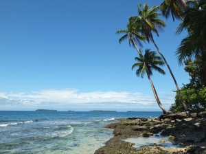 Tropical island with a sandy beach where we snorekelled and The Lad dived.